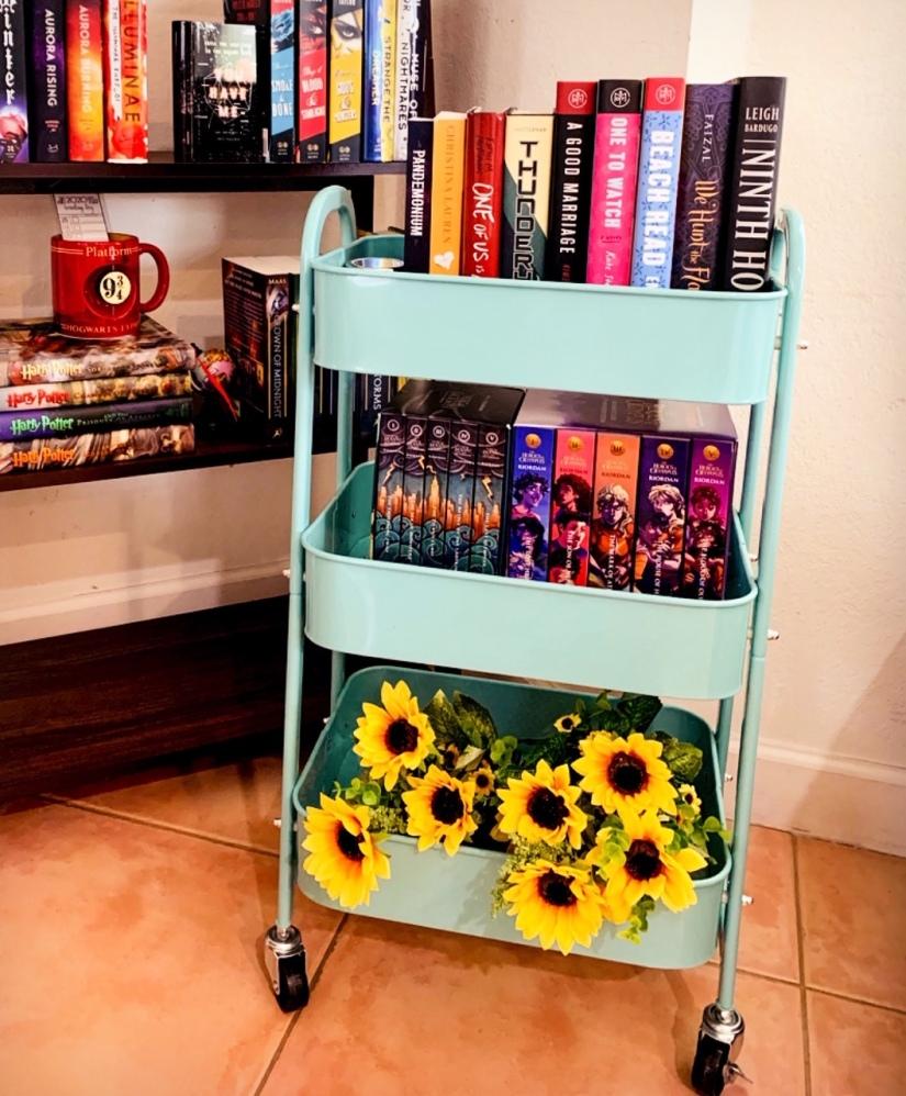 tbr book cart